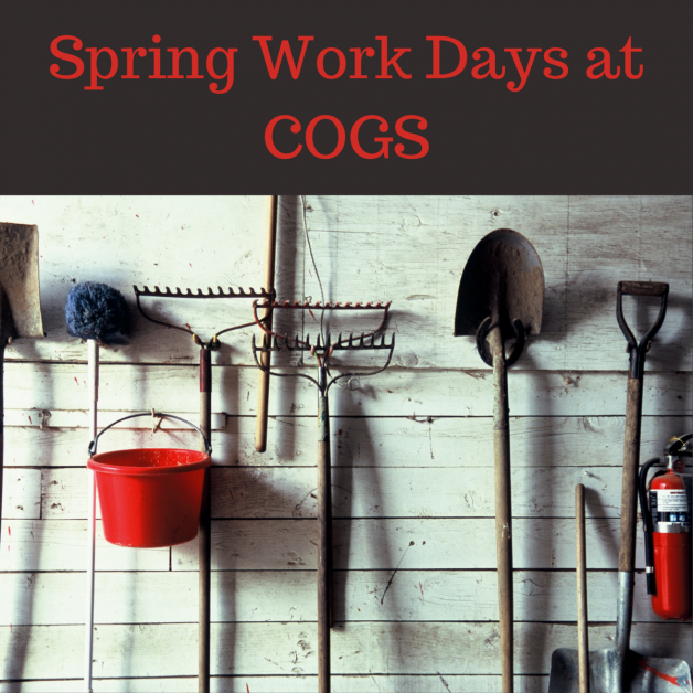 Spring Work Days at COGS